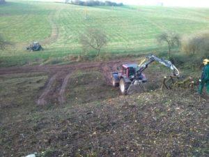 Rodung der Bepflanzung für Zaunbau