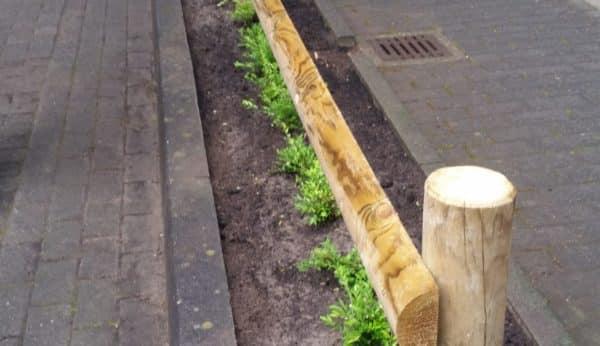 Schutz der Anpflanzung
