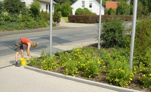 Gartenpflege im GEwerbegarten Bad Oeynhausen