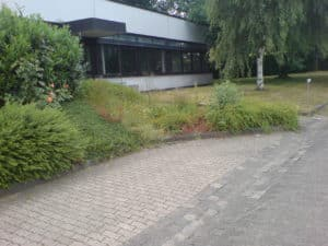 Gartenpflege Gewerbebetrieb Löhne