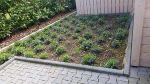 Gartenpflege Bad Oeynhausen