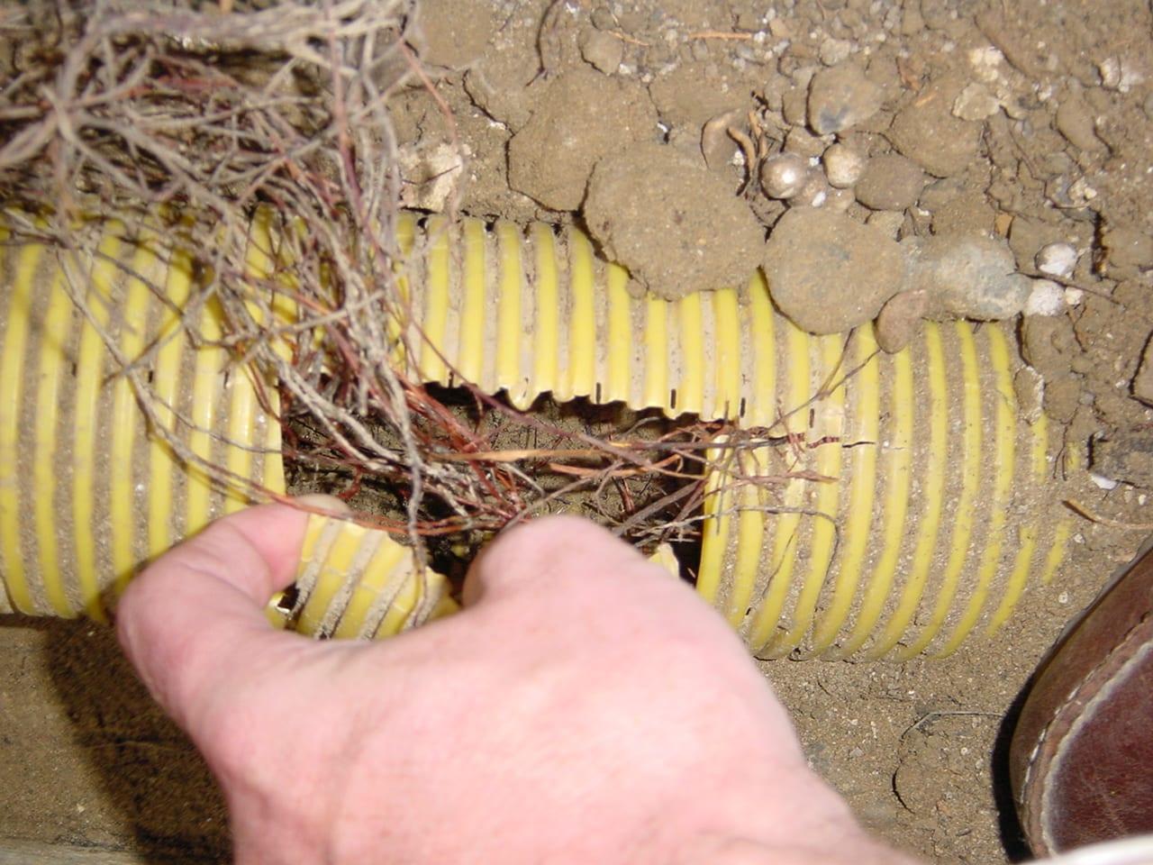 Sanierung von Drainageschäden