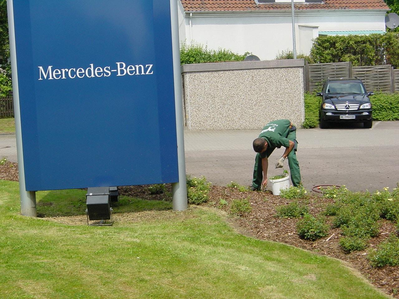 Gartenpflege an Gewerbeobjekten Bad Oeynhausen