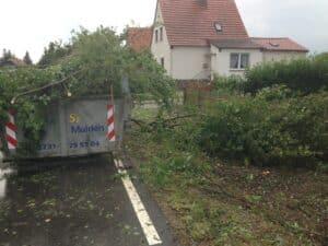 Grünschnittverladung in Mulden Bad Oeynhausen