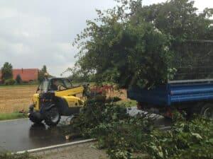 Grünschnittverladung in Anhänger Bad Oeynhausen