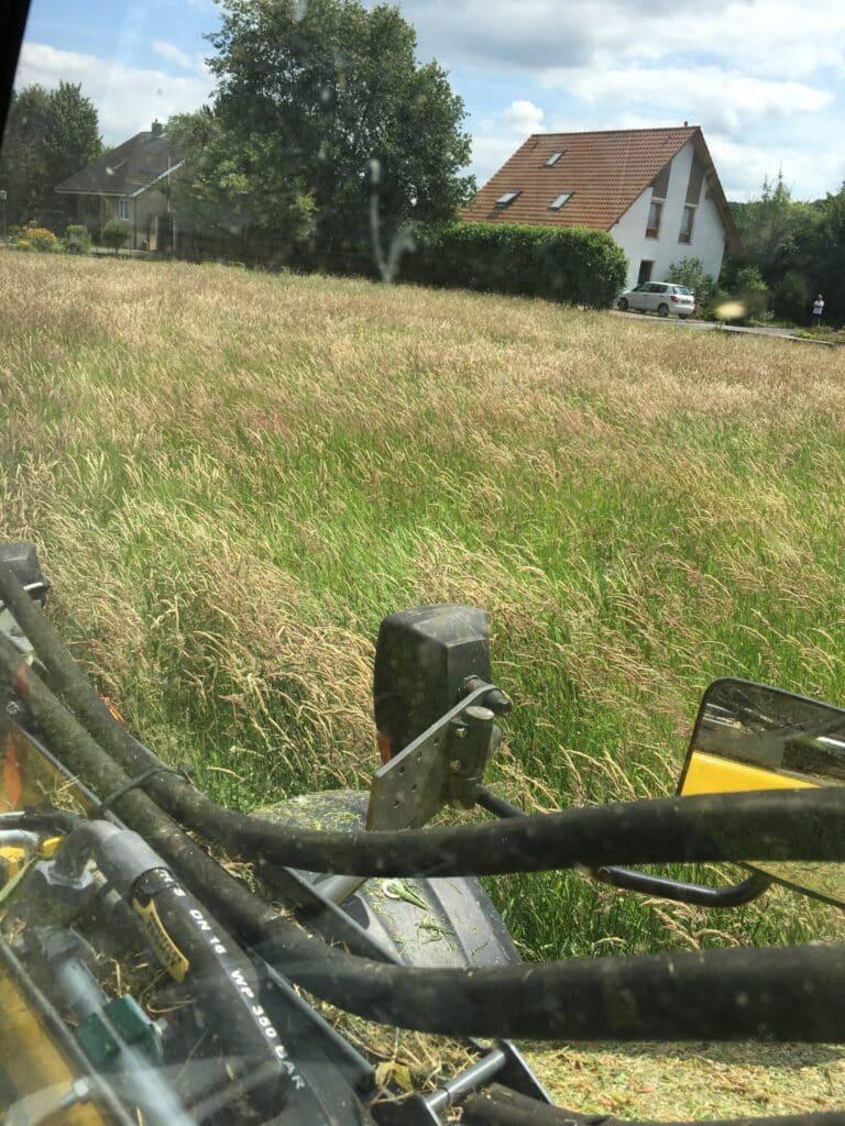 Bauplatz mähen in Bad Oeynhausen