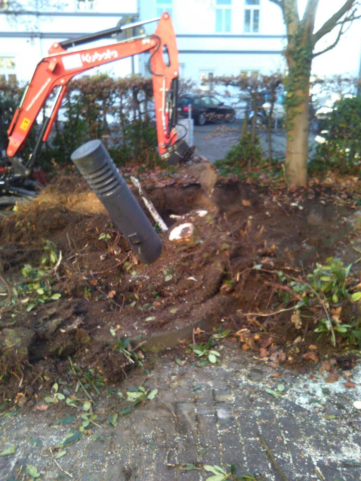 Gartengestaltung WEG Bad Oeynhausen