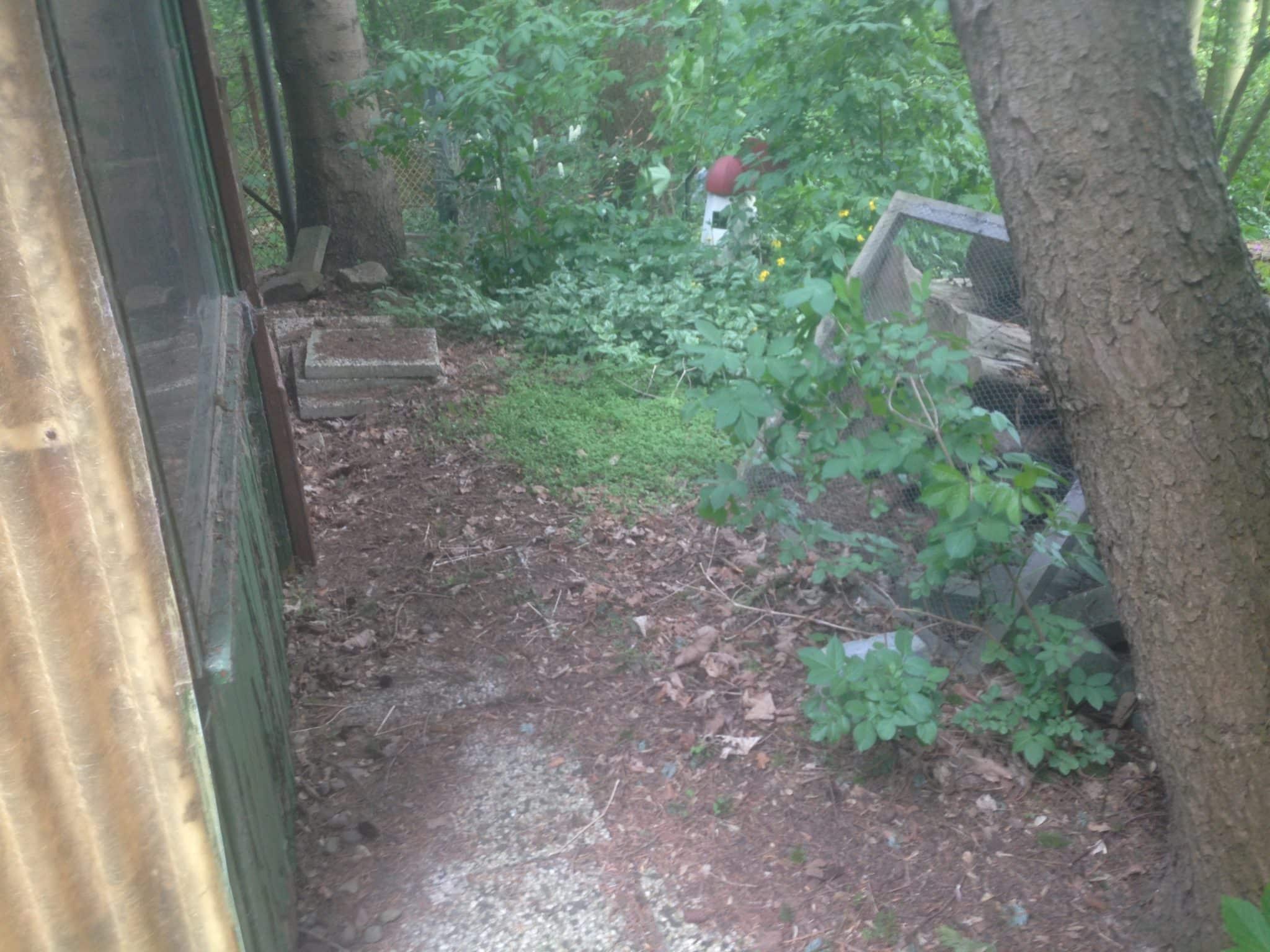 Sanierung der Gartenanlage