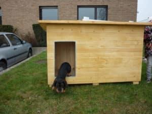 isolierte Hundehütte aus Dänemark