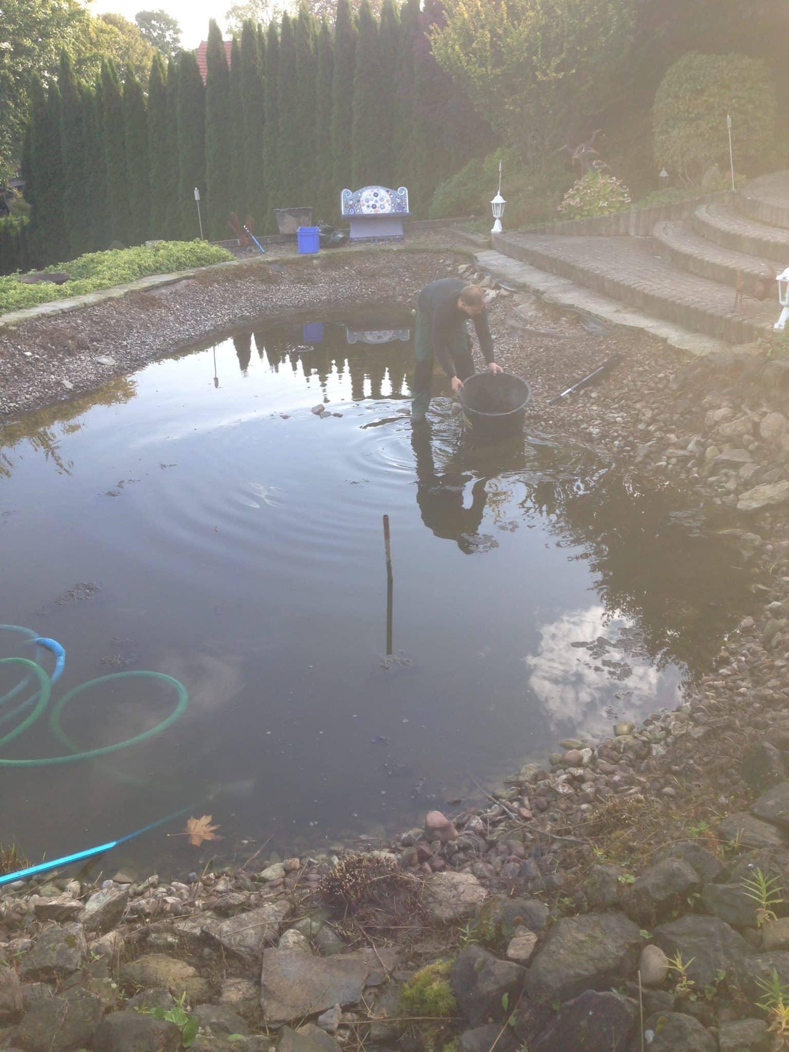 Teichreinigung Bad Oeynhausen