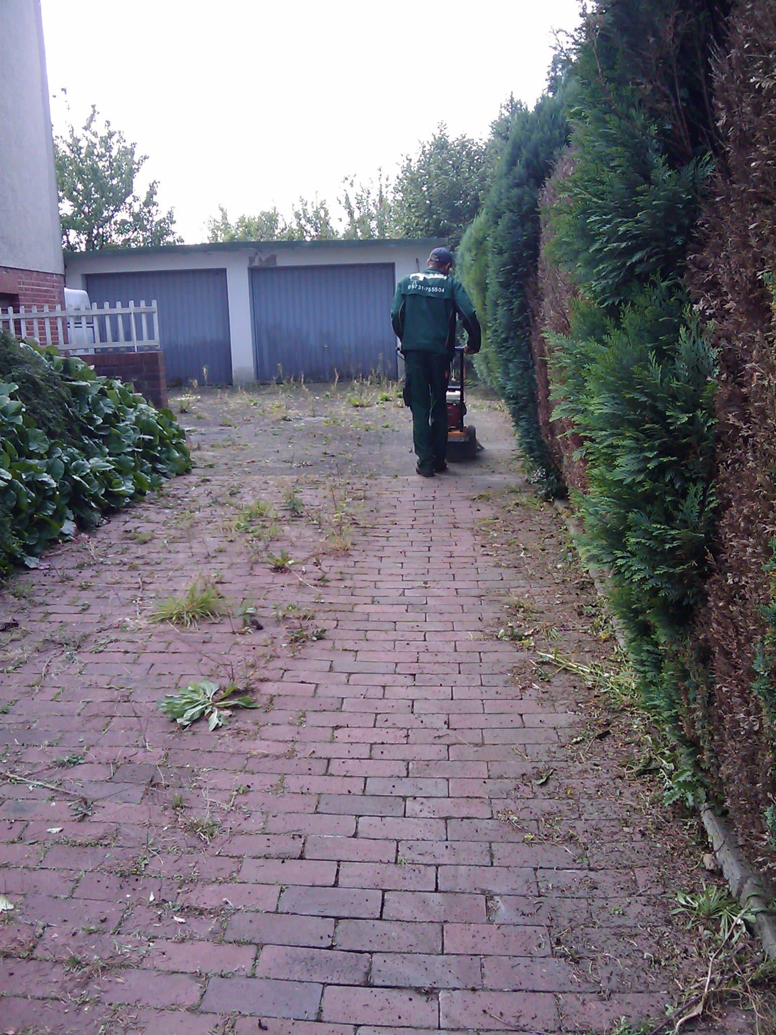 Unkrautbeseitigung in Einfahrten Bad Oeynhausen