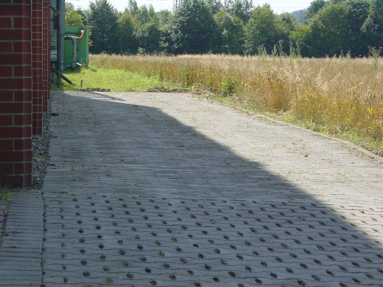 Unkrautbeseitigung auf Parkflächen Bad Oeynhausen