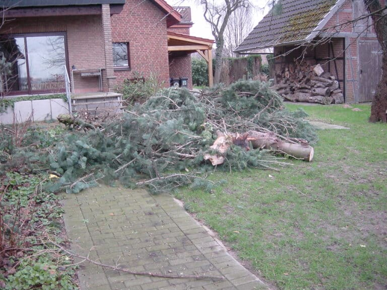 Sturmschadenbeseitigung in Gartenanlagen in Bad Oeynhausen
